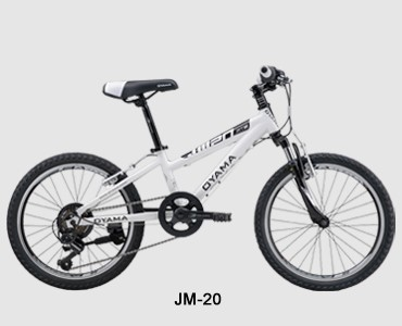 JM-20