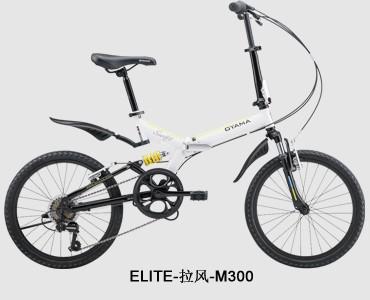 ELITE-拉风-M300